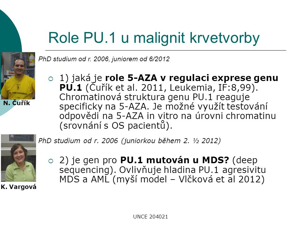 Role PU.1 u malignit krvetvorby
