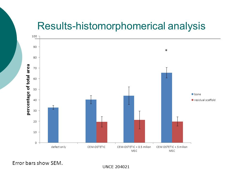 Results-histomorphomerical analysis