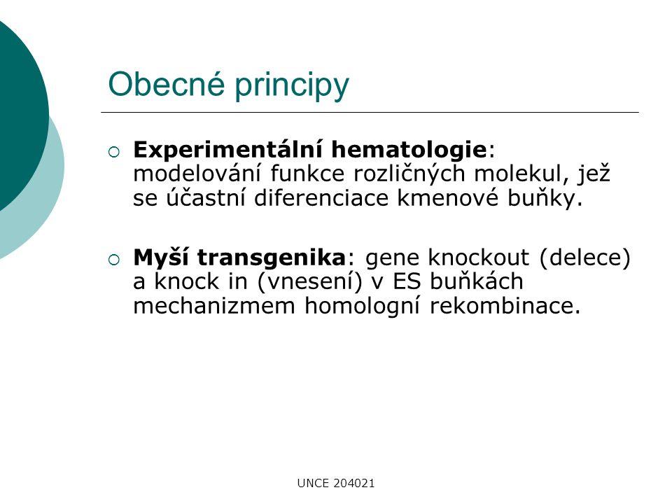 Obecné principy Experimentální hematologie: modelování funkce rozličných molekul, jež se účastní diferenciace kmenové buňky.