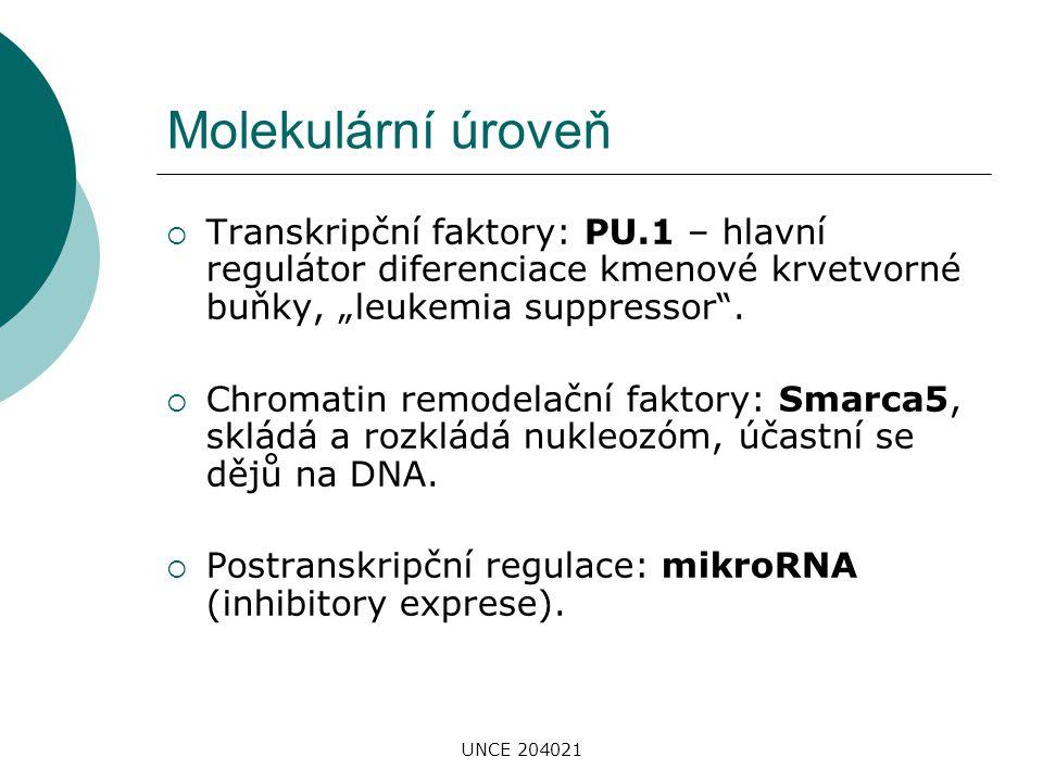 """Molekulární úroveň Transkripční faktory: PU.1 – hlavní regulátor diferenciace kmenové krvetvorné buňky, """"leukemia suppressor ."""