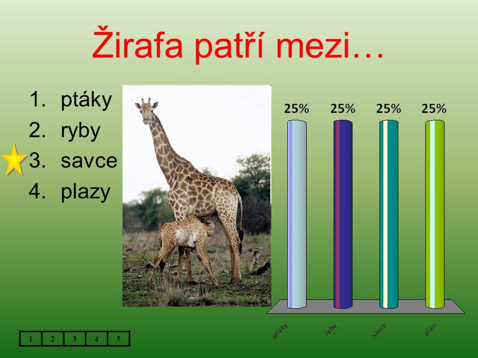 Žirafa patří mezi… ptáky ryby savce plazy 1 2 3 4 5