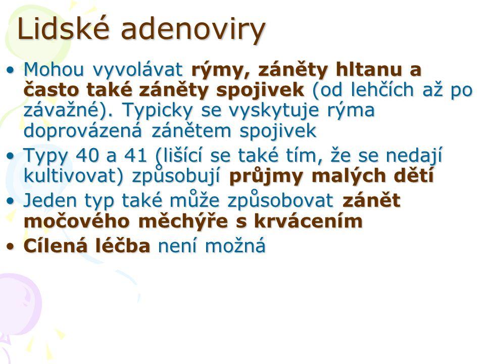Lidské adenoviry