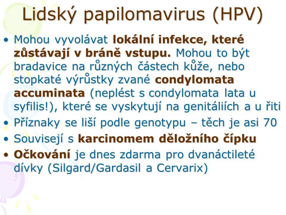 Lidský papilomavirus (HPV)