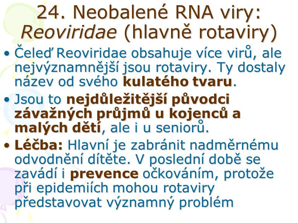 24. Neobalené RNA viry: Reoviridae (hlavně rotaviry)