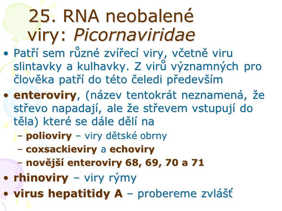 25. RNA neobalené viry: Picornaviridae