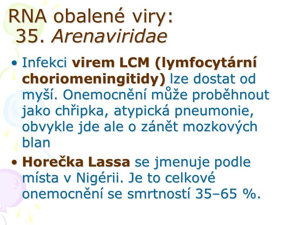 RNA obalené viry: 35. Arenaviridae
