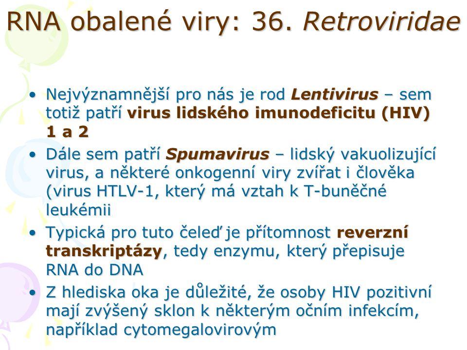 RNA obalené viry: 36. Retroviridae