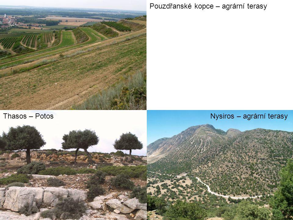 Pouzdřanské kopce – agrární terasy