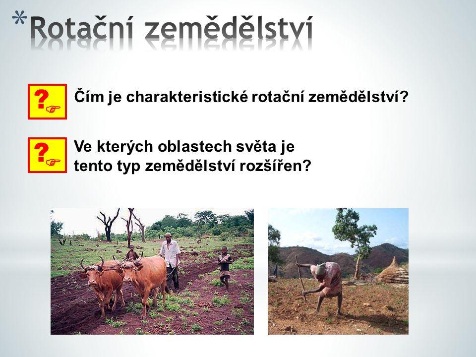 Rotační zemědělství  