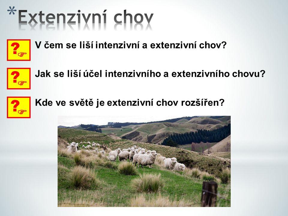Extenzivní chov  V čem se liší intenzivní a extenzivní chov  Jak se liší účel intenzivního a extenzivního chovu