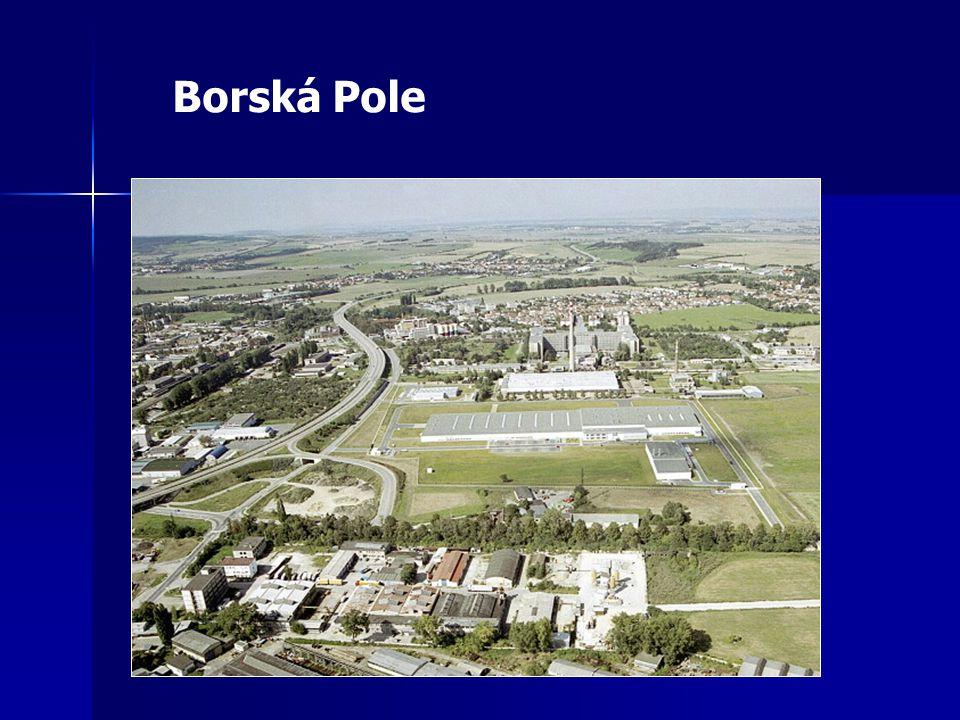 Borská Pole
