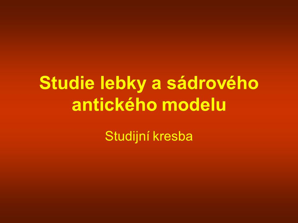 Studie lebky a sádrového antického modelu
