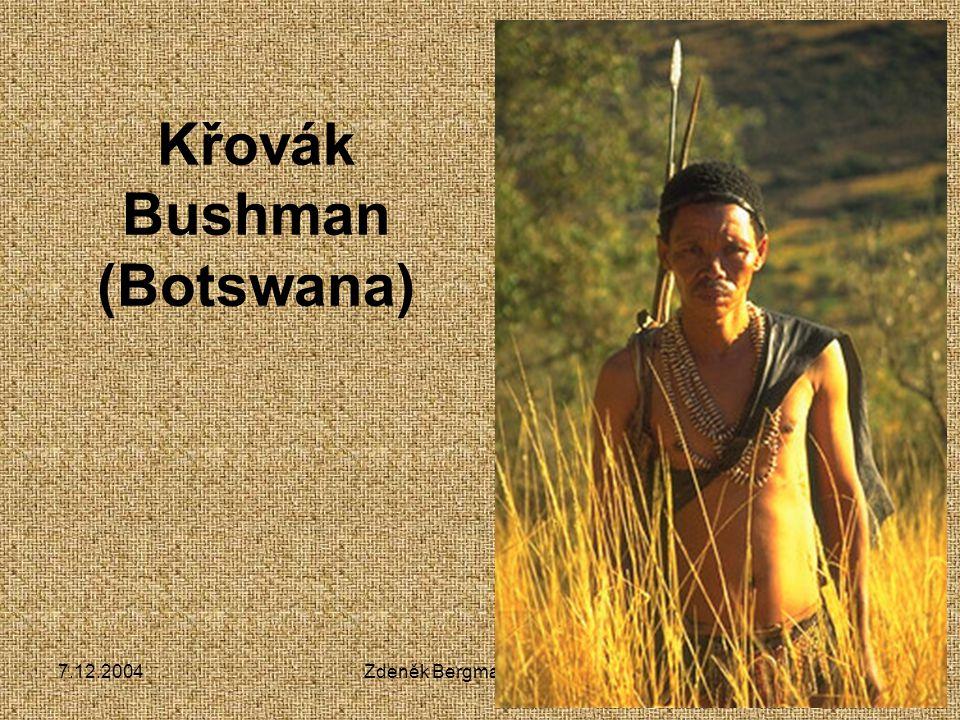 Křovák Bushman (Botswana)