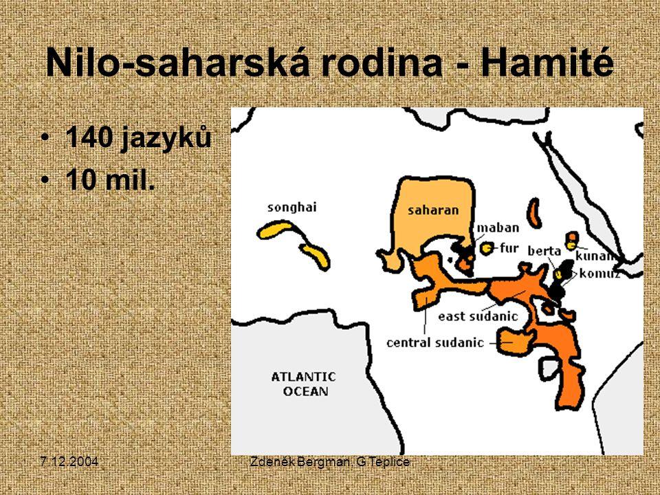 Nilo-saharská rodina - Hamité