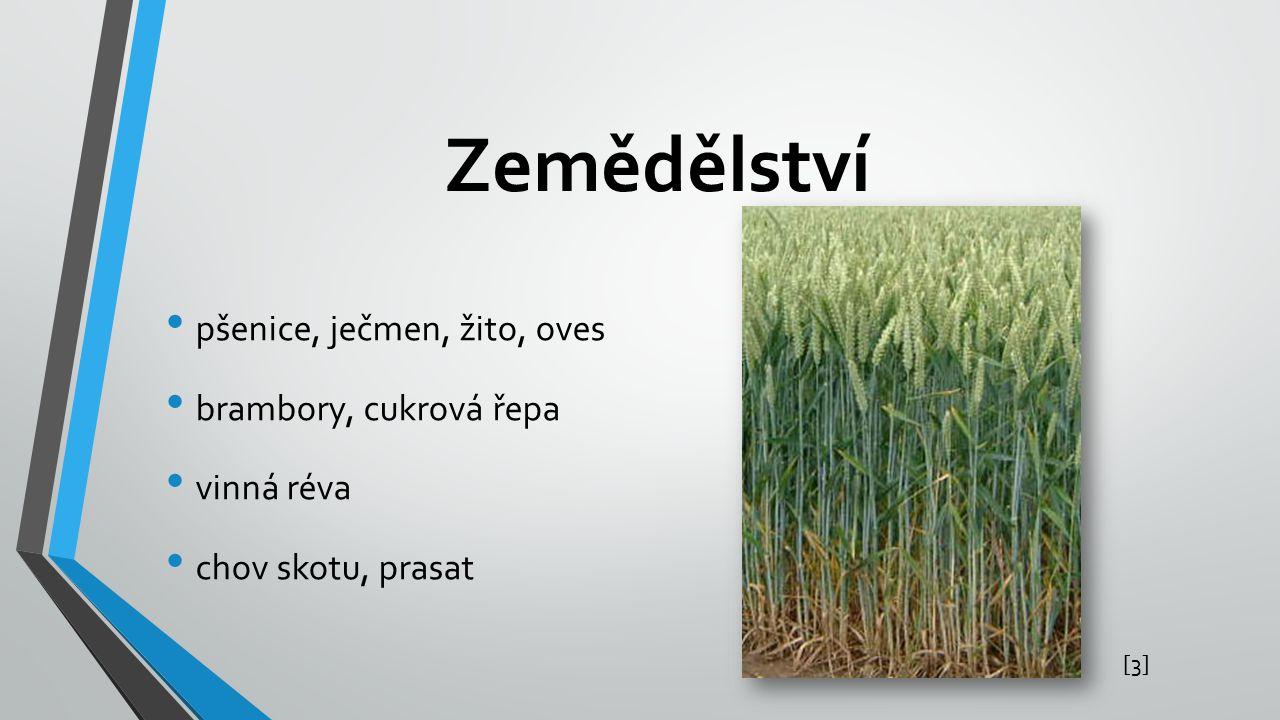 Zemědělství pšenice, ječmen, žito, oves brambory, cukrová řepa