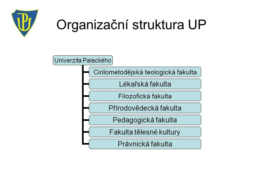 Organizační struktura UP