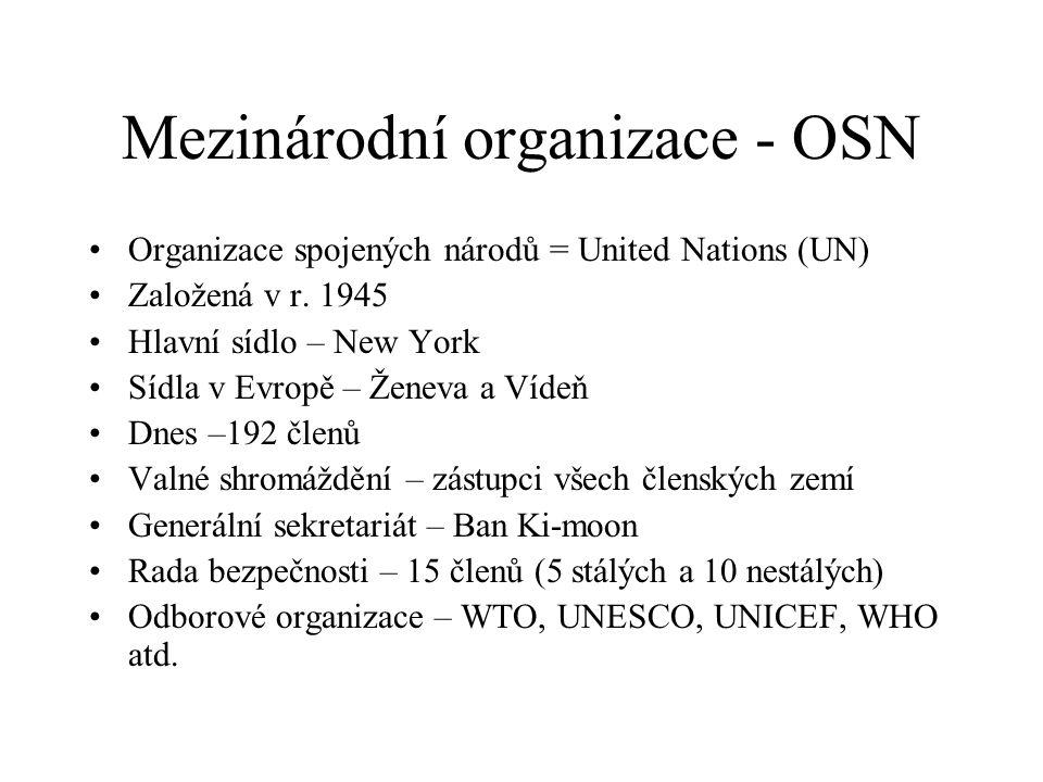 Mezinárodní organizace - OSN