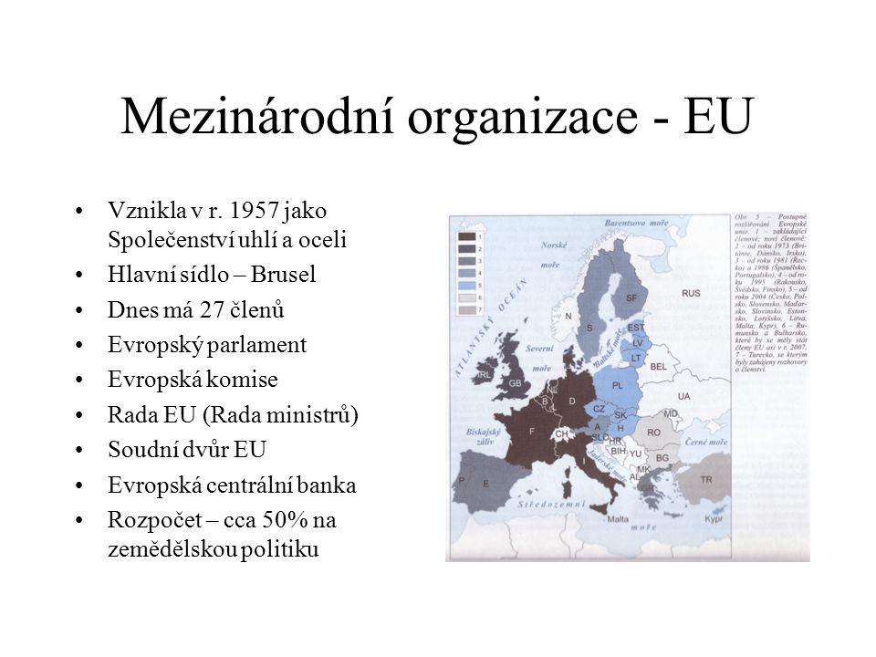 Mezinárodní organizace - EU