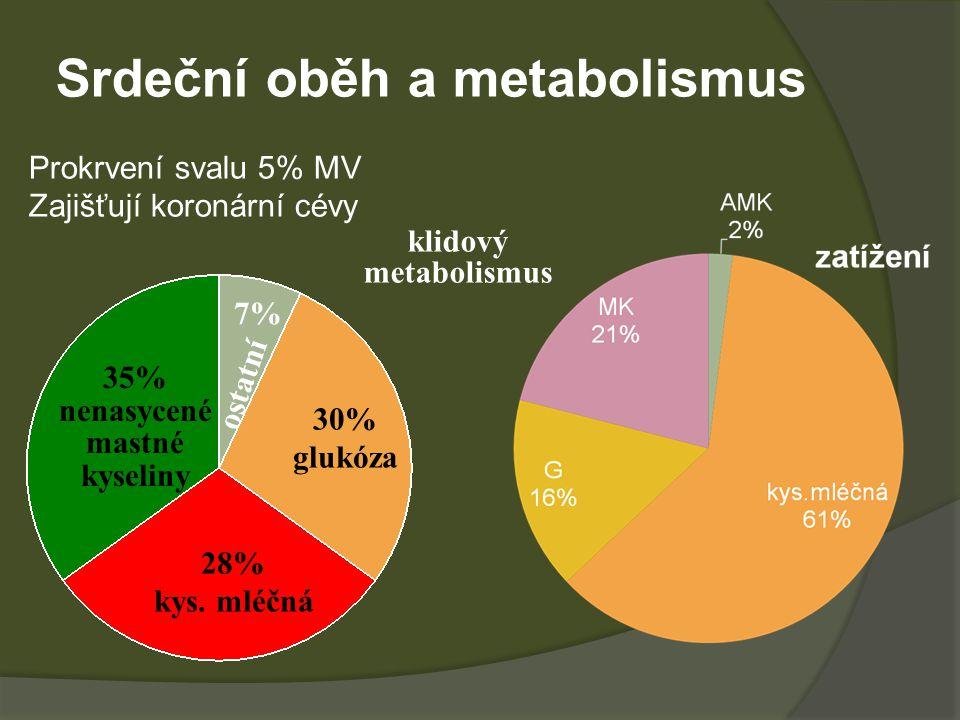 Srdeční oběh a metabolismus