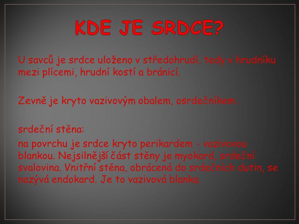 KDE JE SRDCE