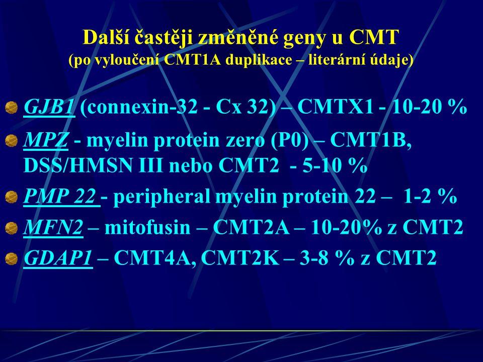 Další častěji změněné geny u CMT (po vyloučení CMT1A duplikace – literární údaje)