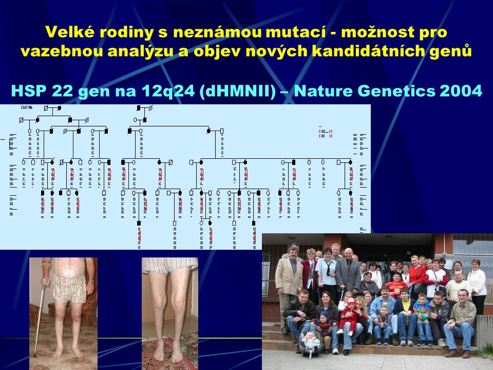 HSP 22 gen na 12q24 (dHMNII) – Nature Genetics 2004