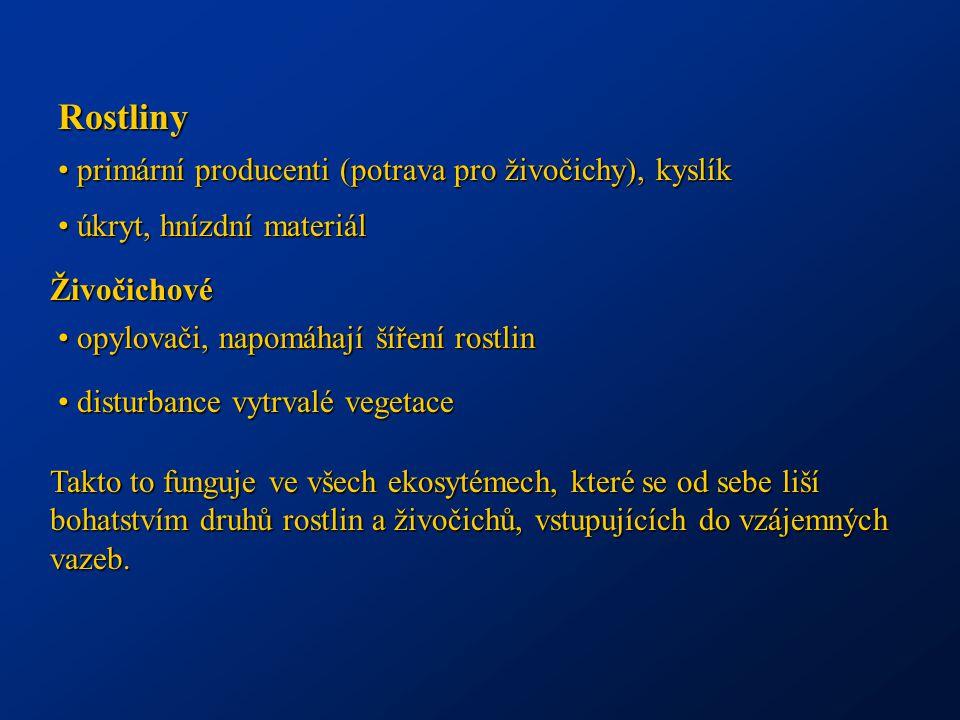 Rostliny primární producenti (potrava pro živočichy), kyslík