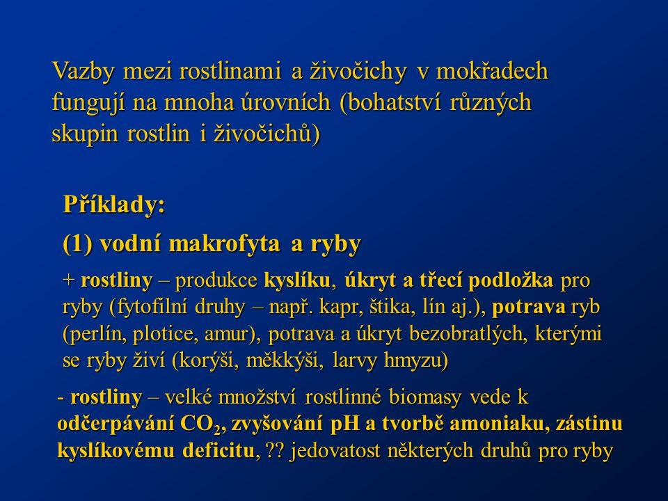 (1) vodní makrofyta a ryby