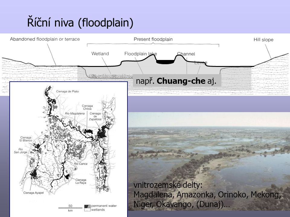 Říční niva (floodplain)