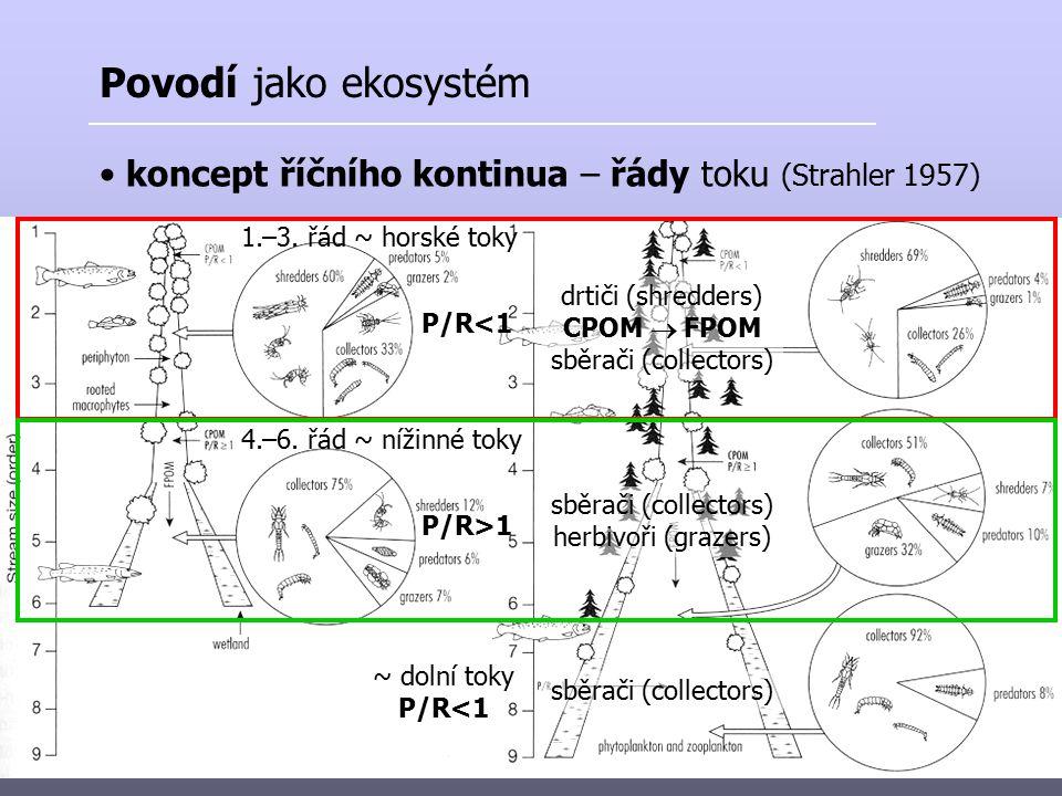 Povodí jako ekosystém koncept říčního kontinua – řády toku (Strahler 1957) 1.–3. řád ~ horské toky.