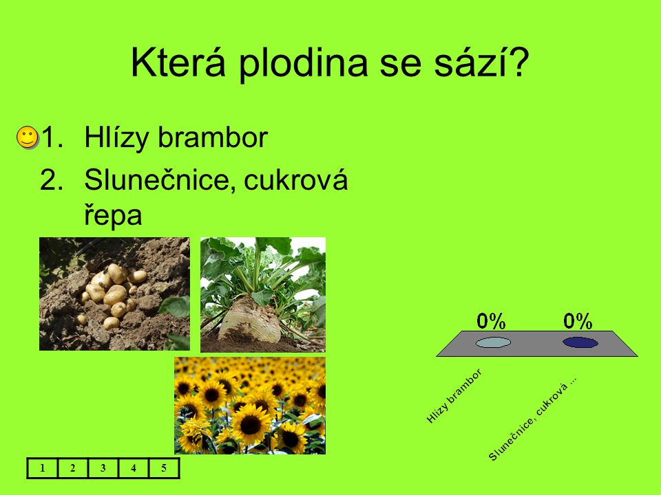 Která plodina se sází Hlízy brambor Slunečnice, cukrová řepa 1 2 3 4
