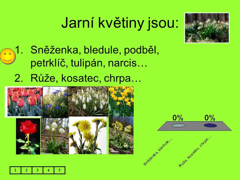 Jarní květiny jsou: Sněženka, bledule, podběl, petrklíč, tulipán, narcis… Růže, kosatec, chrpa… 1.