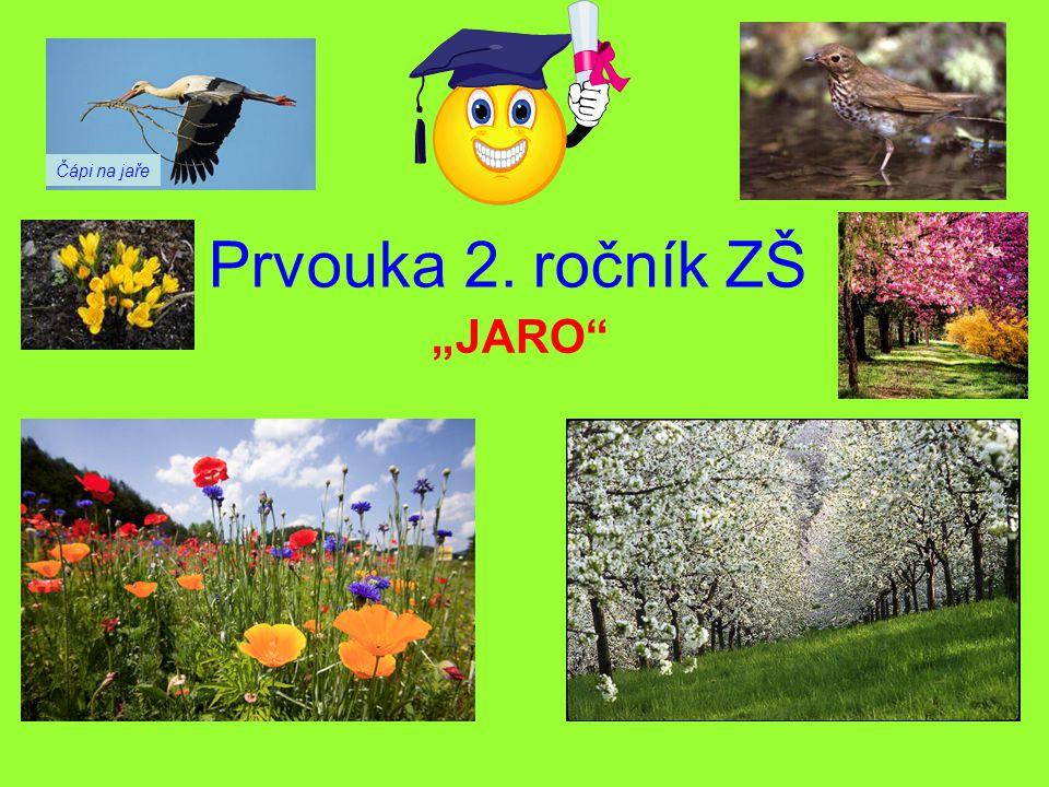 """Čápi na jaře Prvouka 2. ročník ZŠ """"JARO"""