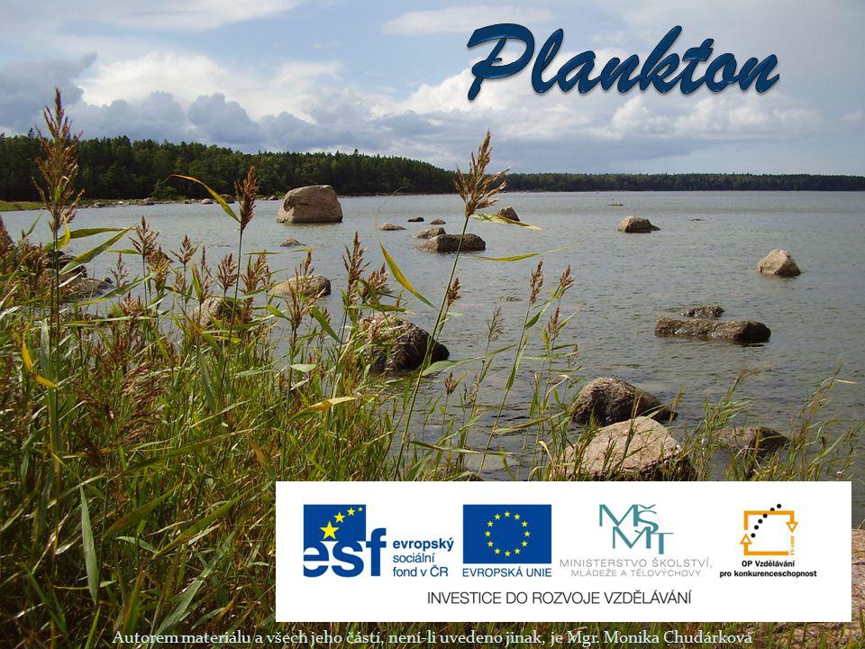 Plankton Autorem materiálu a všech jeho částí, není-li uvedeno jinak, je Mgr. Monika Chudárková
