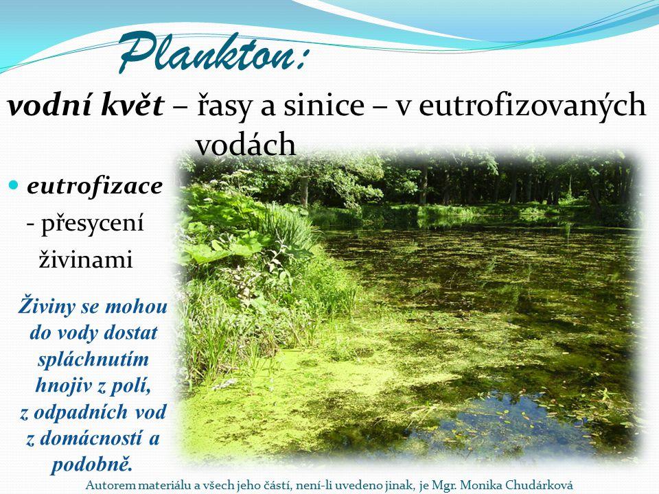 Živiny se mohou do vody dostat spláchnutím hnojiv z polí,