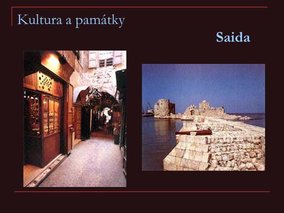 Kultura a památky Saida