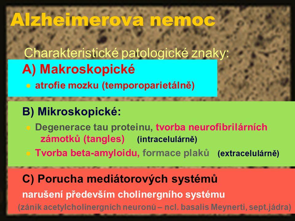 Alzheimerova nemoc Charakteristické patologické znaky: