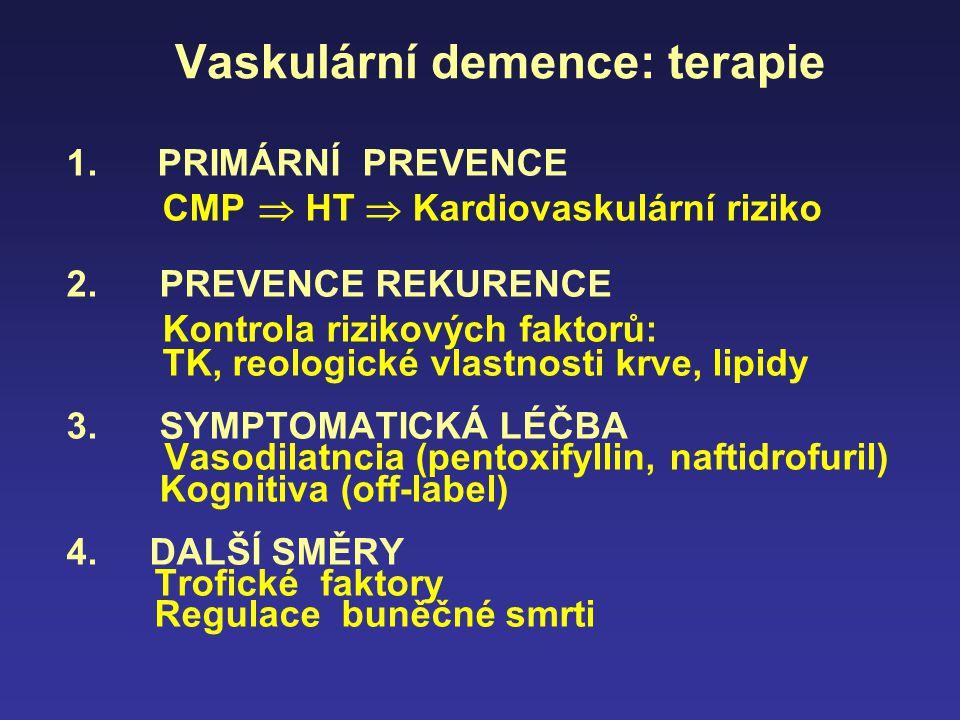 Vaskulární demence: terapie