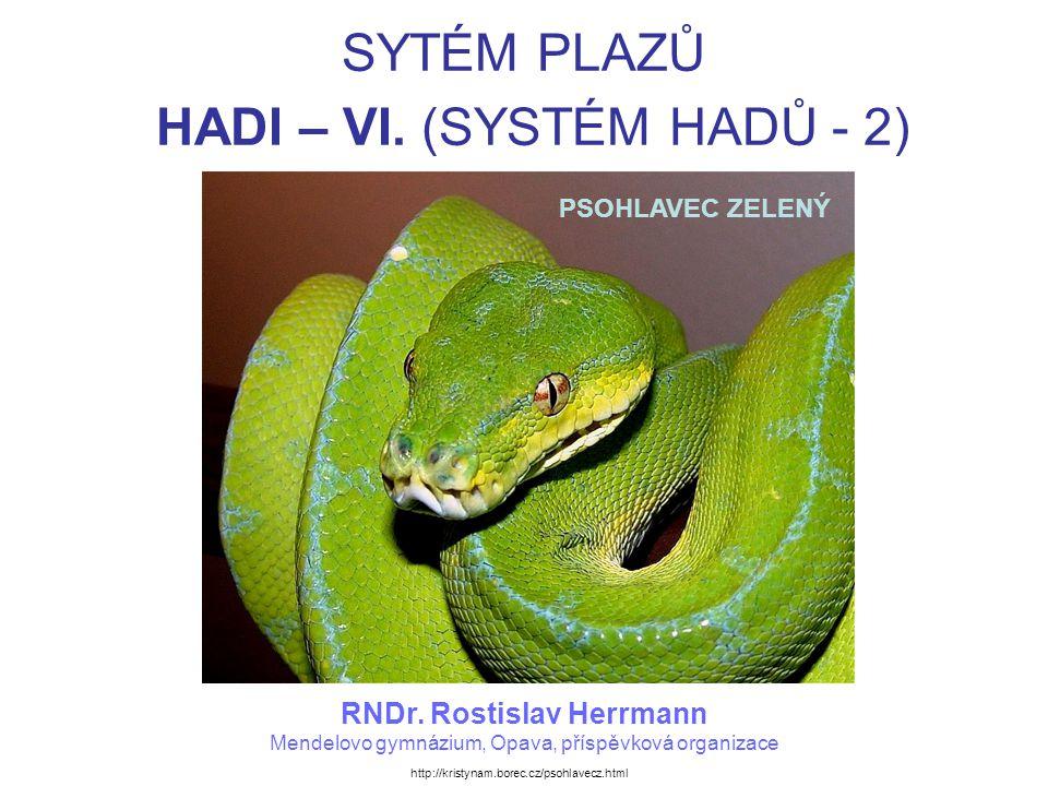 SYTÉM PLAZŮ HADI – VI. (SYSTÉM HADŮ - 2)