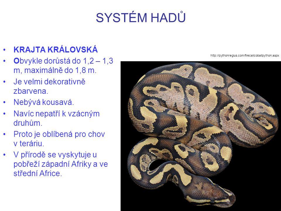 SYSTÉM HADŮ KRAJTA KRÁLOVSKÁ