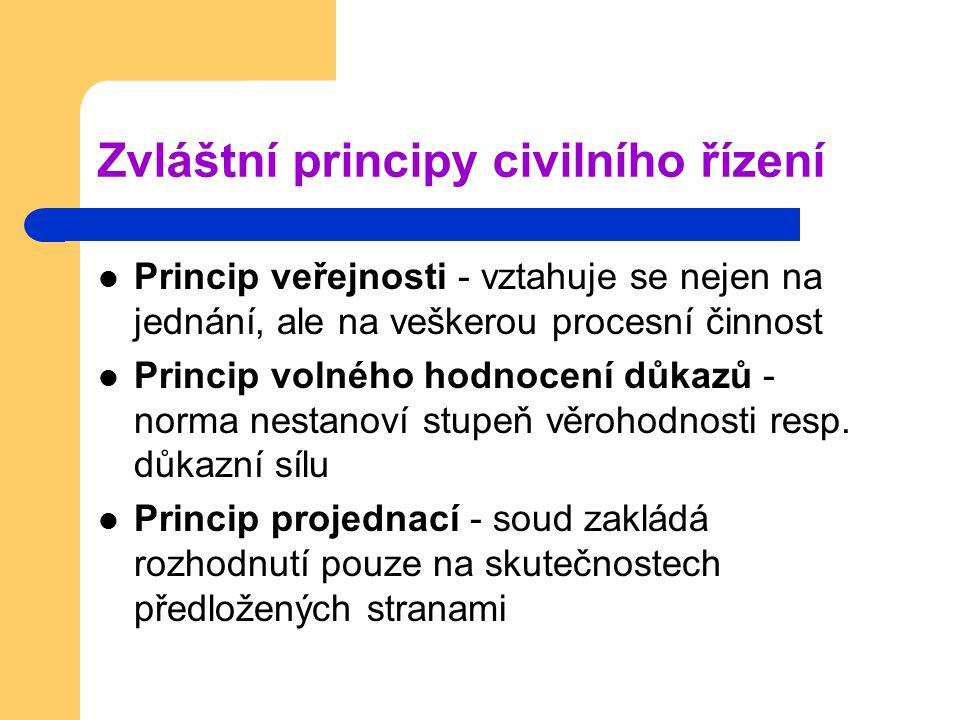 Zvláštní principy civilního řízení
