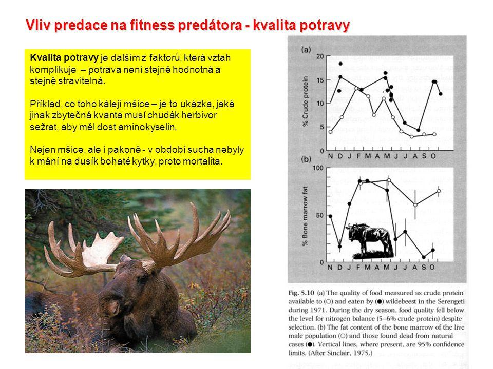 Vliv predace na fitness predátora - kvalita potravy