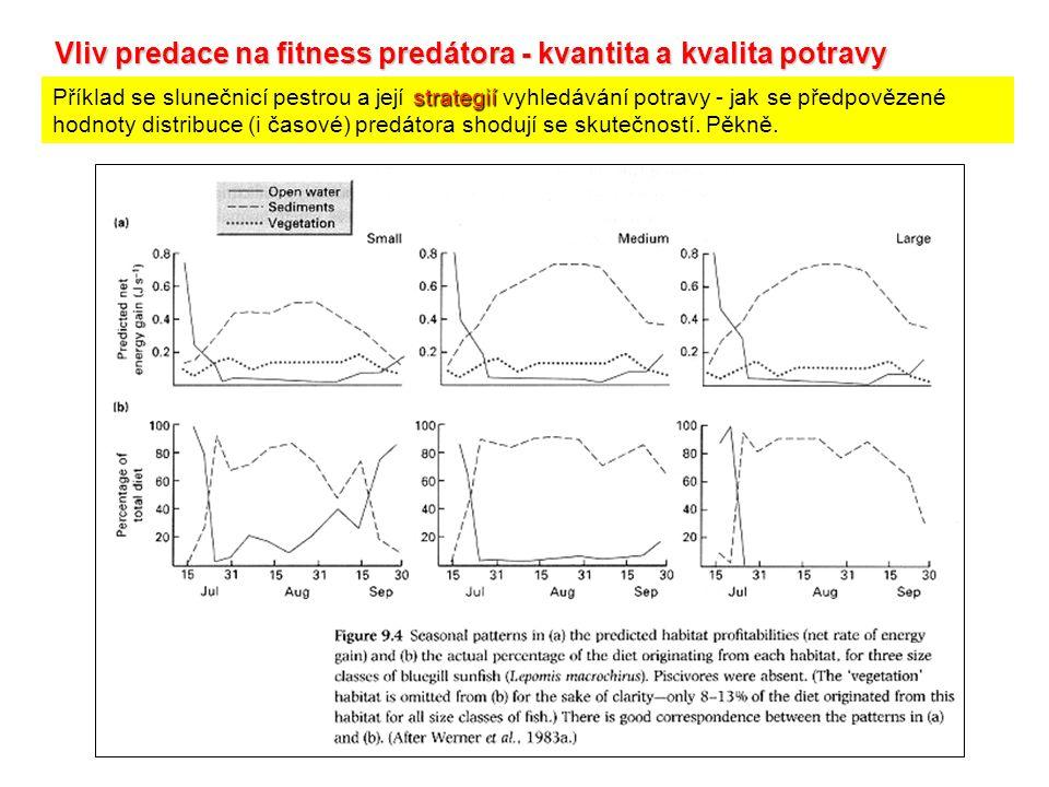 Vliv predace na fitness predátora - kvantita a kvalita potravy
