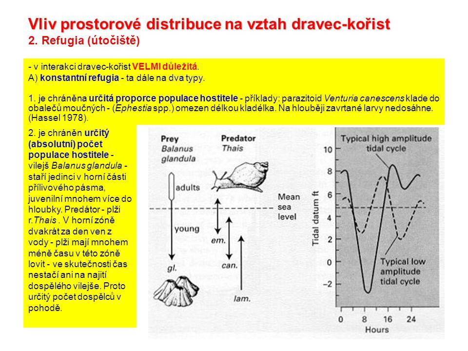 Vliv prostorové distribuce na vztah dravec-kořist