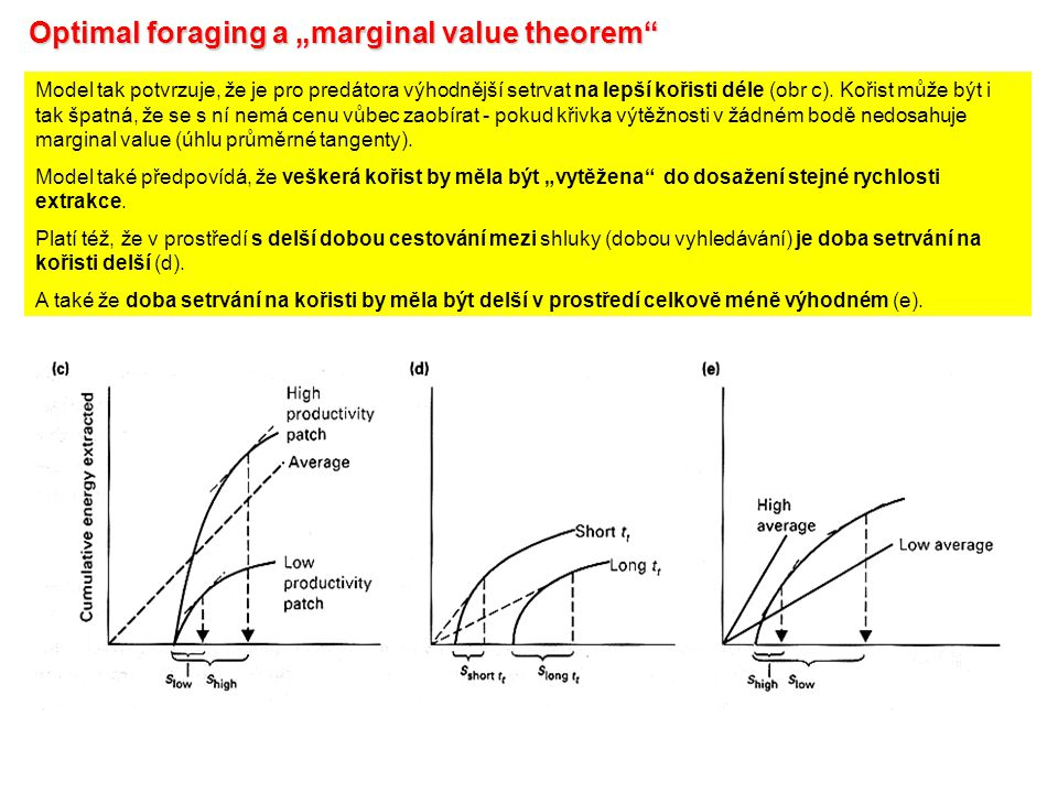 "Optimal foraging a ""marginal value theorem"