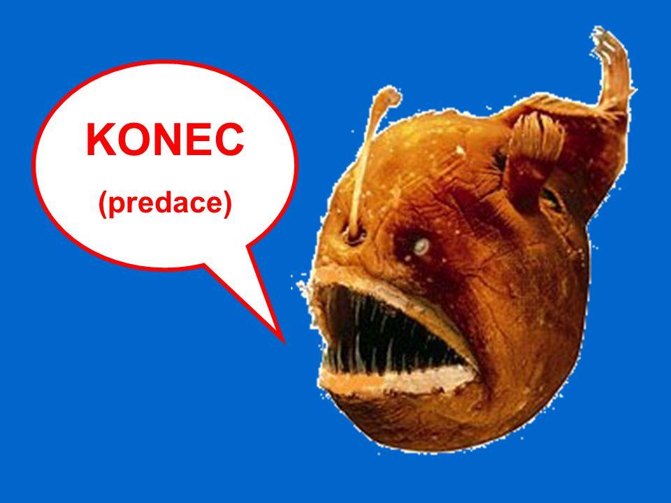 KONEC (predace)