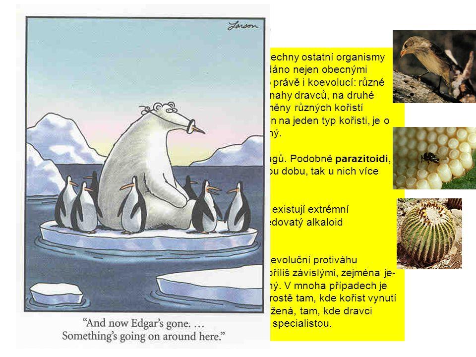 Koevoluce a specializace dravce