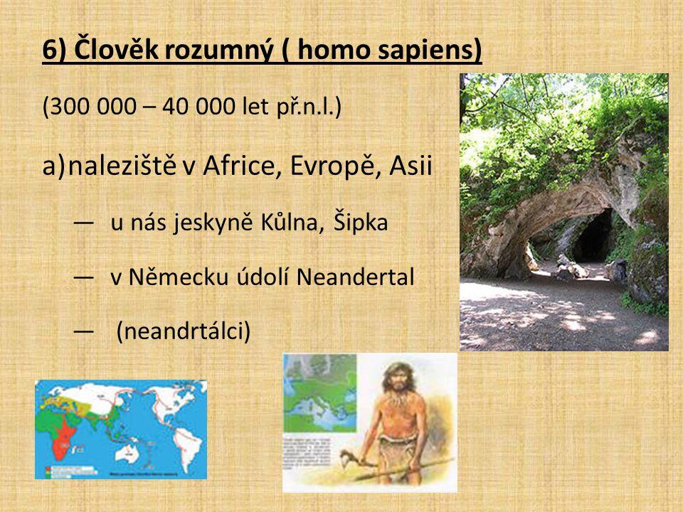 6) Člověk rozumný ( homo sapiens)