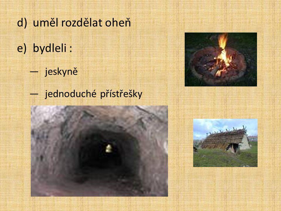uměl rozdělat oheň bydleli : jeskyně jednoduché přístřešky