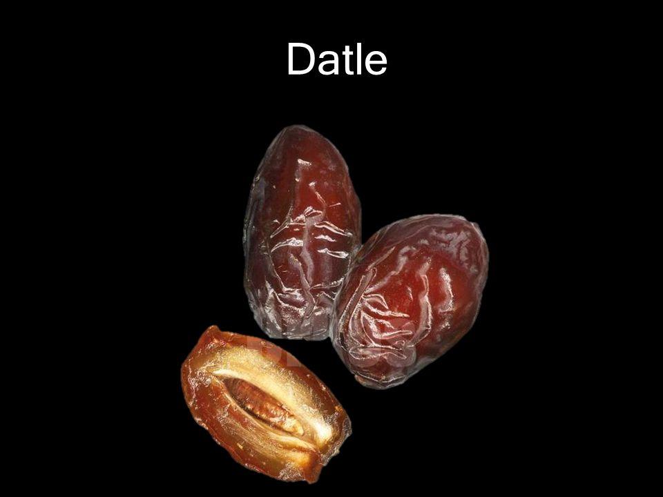 Datle